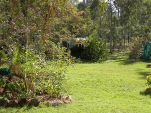 A garden outside Wondai Hideaway Apartment