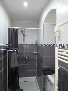 A bathroom at Le Rodriguez
