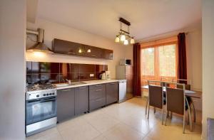Kuchnia lub aneks kuchenny w obiekcie Apartamenty Sun Seasons 24 - Skalne