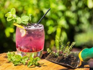 Drinks at Hilton Wilmington/Christiana