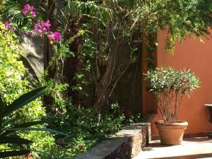 Jardin de l'établissement Hostellerie du Cigalou - Les Collectionneurs