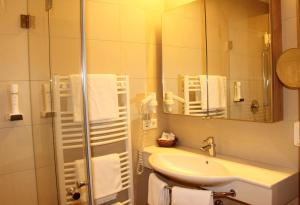 A bathroom at Laschensky Dependance