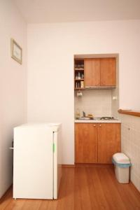A kitchen or kitchenette at Apartments with a parking space Plat, Dubrovnik - 8612