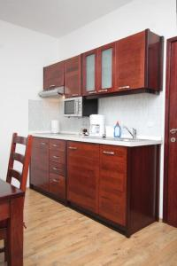 A kitchen or kitchenette at Apartments and rooms with parking space Mlini, Dubrovnik - 8994
