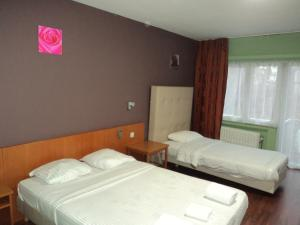 A bed or beds in a room at Albert Hotel