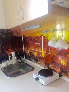 Кухня или мини-кухня в Apartment on Skhodnenskaya 11