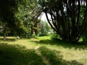 A garden outside Sidi Harazem