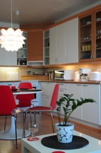 Majoituspaikan Aliisa's Apartment keittiö tai keittotila