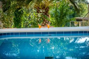 Majoituspaikassa Villa Zlata tai sen lähellä sijaitseva uima-allas