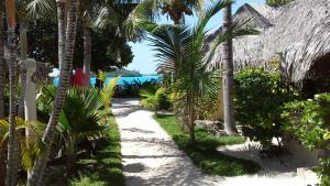 Vue sur la piscine de l'établissement Village Temanuata ou sur une piscine à proximité