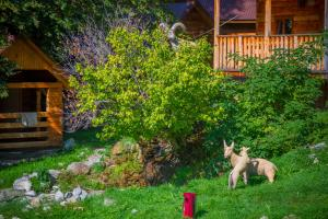 Сад в База отдыха Богословка