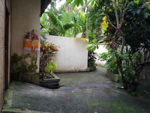 A garden outside White Lotus