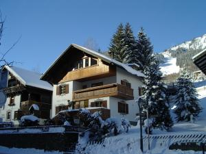 Haus Enzian during the winter