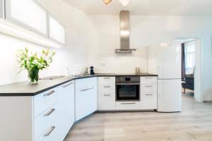 A kitchen or kitchenette at VENIA Apartments