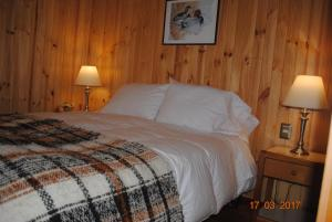 Cama o camas de una habitación en Cabañas Trayen