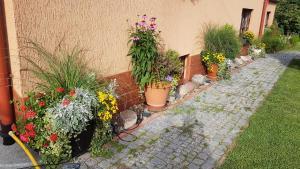 Ogród w obiekcie Wanda