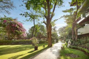 A garden outside Novotel Bali Nusa Dua