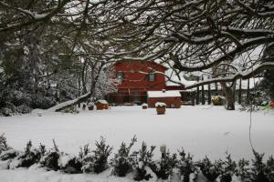 Tenuta Agricola Fonte Di Papa зимой