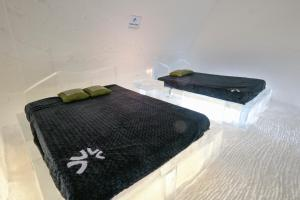 Cama o camas de una habitación en Hotel de Glace