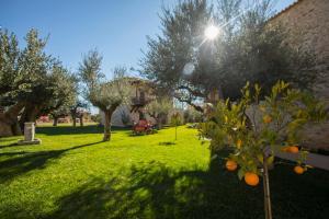 Ein Garten an der Unterkunft Mystras Grand Palace Resort & Spa
