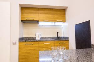 A kitchen or kitchenette at Pushkinskaya Apartments