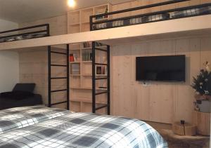 TV a/nebo společenská místnost v ubytování Apartmány na sjezdovce Dolní Morava