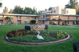 A garden outside Nof Ginosar Kibbutz Hotel