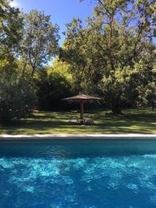 The swimming pool at or near Hotel Château Des Alpilles