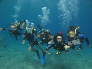 Snorkeling and/or diving at the hotel or nearby