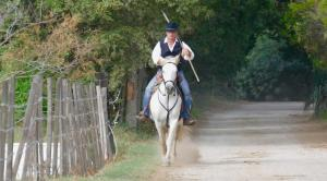Équitation au sein de le B&B/chambre d'hôtes ou à proximité