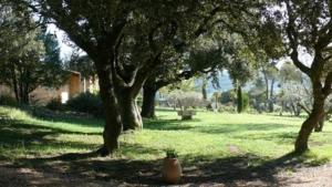 A garden outside Les Bastides de l'Auviduery