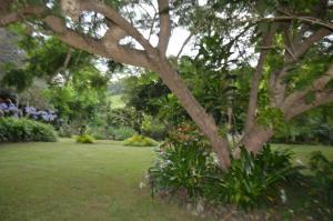 A garden outside Ruddles Retreat