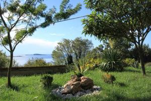 A garden outside Apartments with a parking space Plat, Dubrovnik - 4792