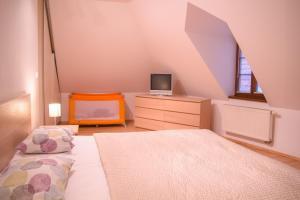 Televízia a/alebo spoločenská miestnosť v ubytovaní Old Town Apartment
