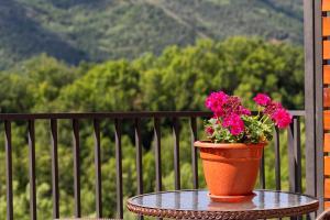 Un balcón o terraza de Apartaments Flor De Neu