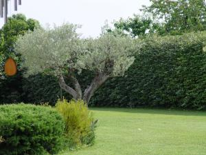 A garden outside La Guéritaulde