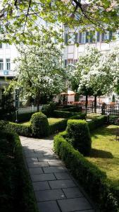 Ein Garten an der Unterkunft Hotel Bürger Palais