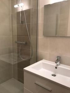 A bathroom at Appart Meublé Bourgoin