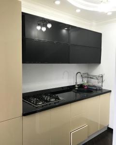 A cozinha ou cozinha compacta de Welcome Baku Apartment