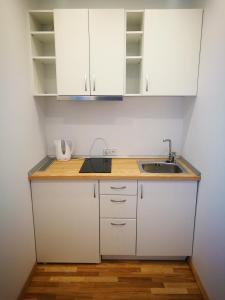 A kitchen or kitchenette at Klevas