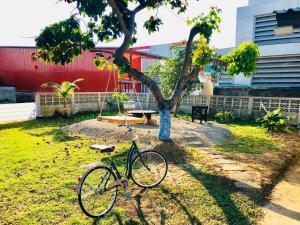Jardin de l'établissement Winter House Chiang Rai
