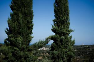 Natuurlandschap vlak bij de villa