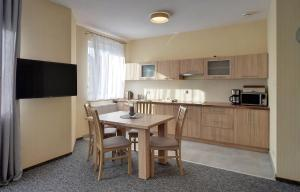Kuchnia lub aneks kuchenny w obiekcie Apartamenty Sun Seasons 24 - Karpacz Centrum