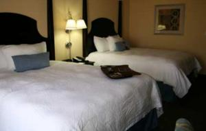 A bed or beds in a room at Hampton Inn & Suites Natchez