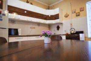 Лобби или стойка регистрации в Дом для отпуска Вилла Ефимия