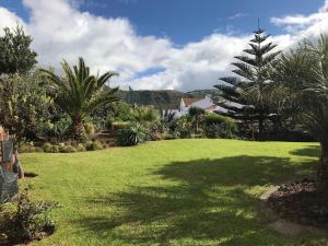 Een tuin van Natureza Vulcânica