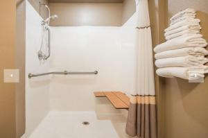 A bathroom at Microtel Inn and Suites By Wyndham Miami OK