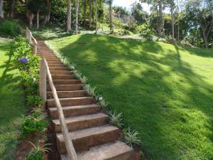 Um jardim em Estrela do Imbuí