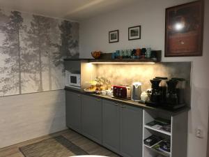 Кухня или мини-кухня в Guesthouse Borealis