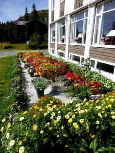 A garden outside Tronsvangen Seter